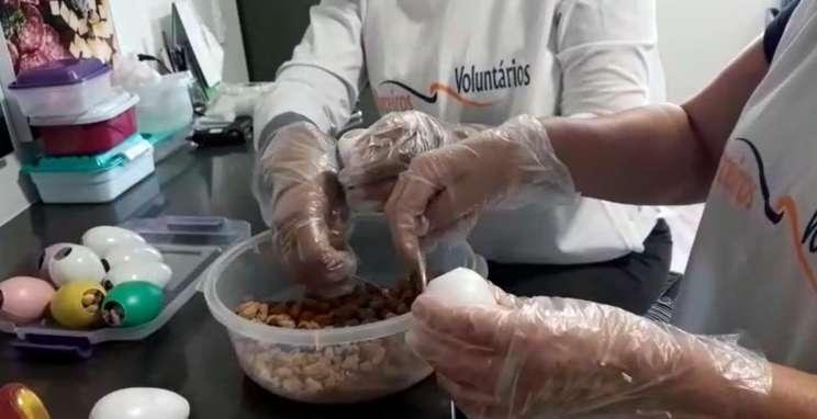 ONG Parceiros Voluntários entrega cerca de 500 ovinhos de Páscoa aos profissionais de saúde do Hospital Tacchini